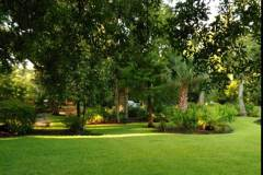 the beautful amelia condo landscaping includes lovely green space